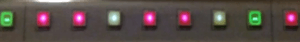 Dettaglio di un gruppo di LED del Tropical Pro.