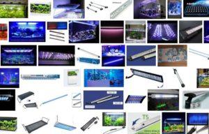 """Ricerca di """"LED acquario"""""""