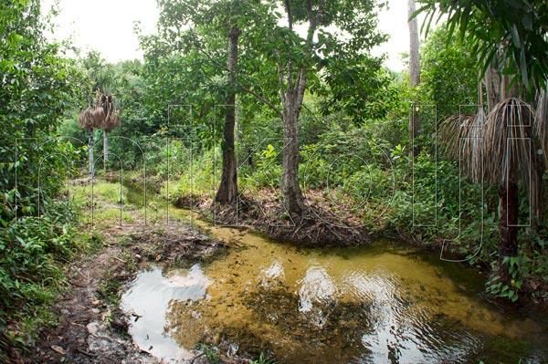 Corso d'acqua Venezuela