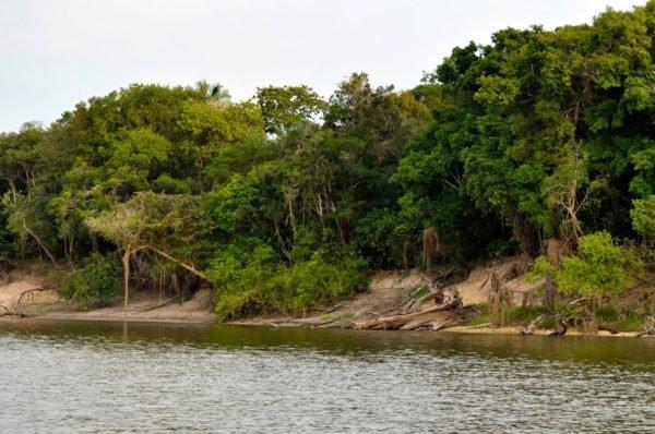 Lago Nhamunda