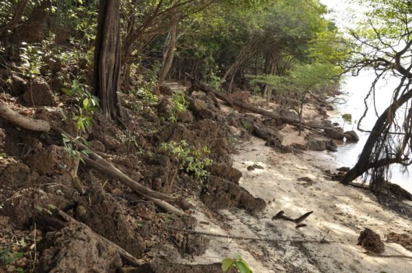 Sponda fiume