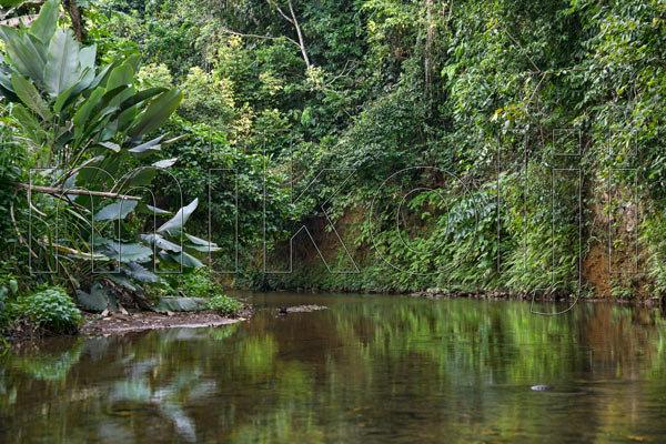 Panoramica di un biotopo naturale