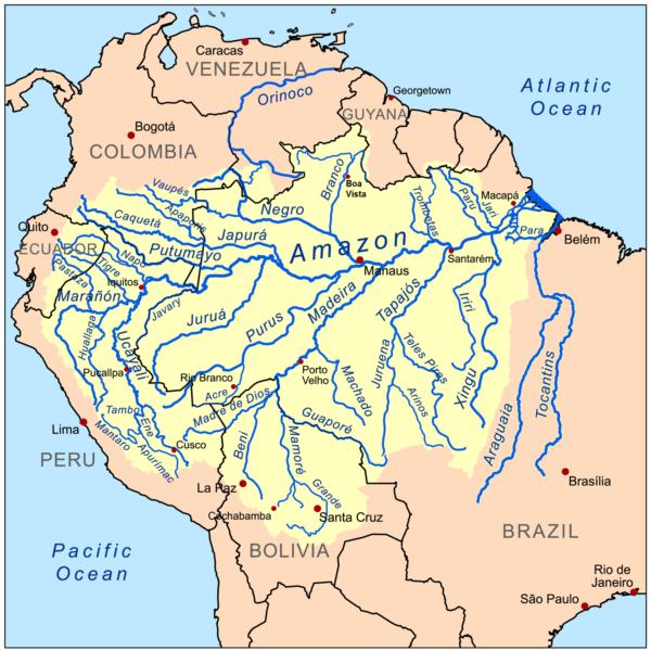 Bacino del Rio delle Amazzoni
