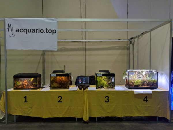 Stand Petsfestival